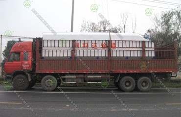 15吨散装德赢vwin米兰运输车(山西客户)